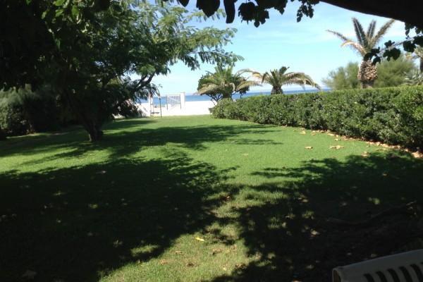 giardino01